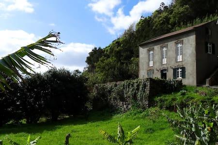 Quinta dos Icaros, terrace room.