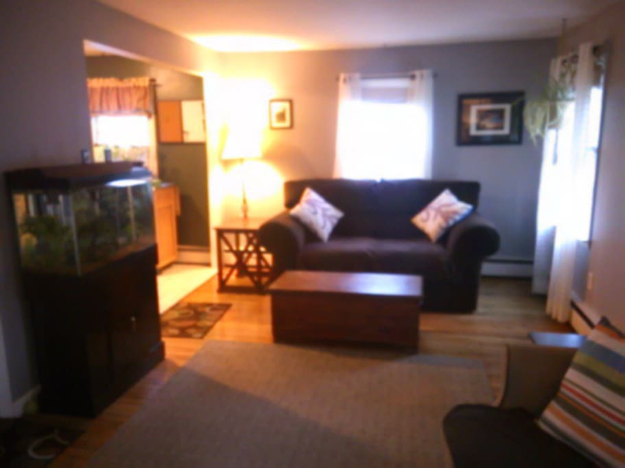 LR love seat, full size couch, TV