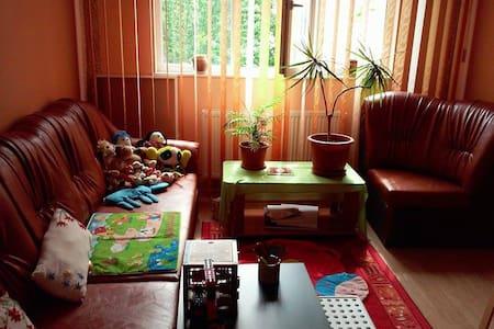 Beautiful & Cozy Campina Appartment - Câmpina - Appartamento