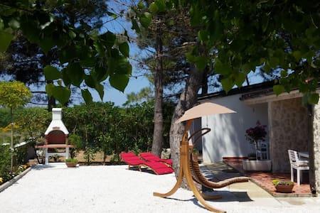 Casa Zara - bungalow in Privlaka - Privlaka - Apartemen