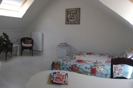 Spacious room in charming house - Hus