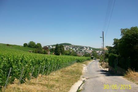 Chambres au milieu des vignes - Épernay - Bed & Breakfast