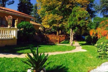 La Villa nel Bosco - Molara