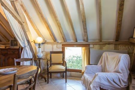 Le toit vieux des bords de Loire - House
