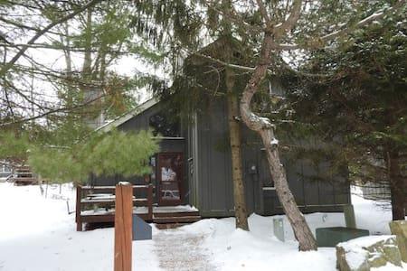 Single Family Home at Jack Frost Ski Resort - Hus