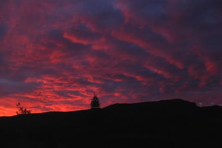Sky Fall Farm - Lillian Rock - Cabane