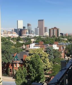 Cap Hill Condo with Gorgeous Views! - Denver - Apartment