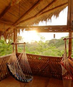 Ocelote Guesthouse and Volunteer Project - Camarones