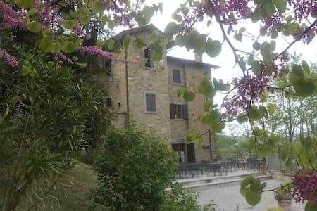 Agriturismo Il Palazzo appartamento piscina - Lisciano Niccone - Apartment