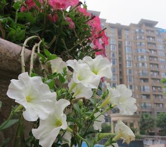 交通方便的独立公寓 - Jiaxing Shi - Condominio