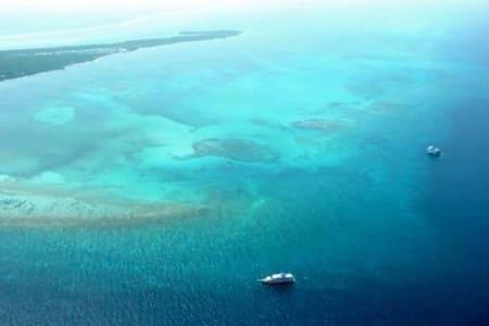 Private Belize Island Studio (Beach Level Family 23): Easy Boat Ride to Blue Hole: We organize it al - Apartment