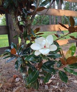 Elegant Log Cabin, Magnolia Suite - Cabaña