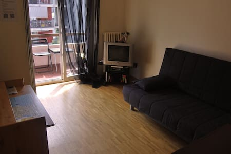 A room with balcony near the city centre of Lugano - Apartment