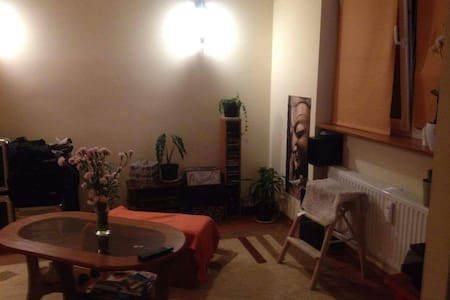 Cozy apartment near center. Room or whole flat. - Wohnung