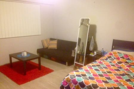 Cute, clean studio in great spot - Bondi Junction - Apartment