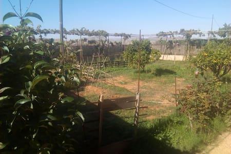 Casa rural cerca de ciudad y playas - Casas del Pino