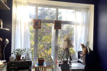 This curated space offers all the comforts from home. Large loft style windows bring in plenty of light during the day. Hooks and shelf space is provided for your convenience. This is a shared apartment, my roommate is very kind and easy going.