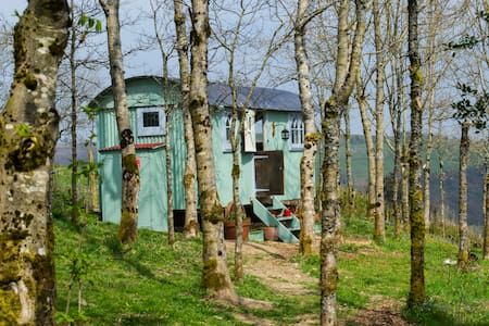 Nadine, our French Shepherds hut. - Appartement