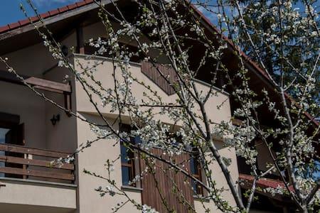 Transylvanian Villa - Rumah