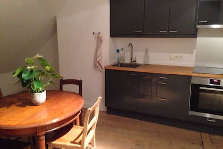spacious and family friendly apartment in Antwerp - Antverpy
