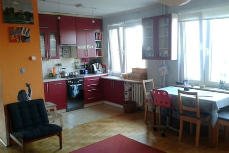 A nice, cheerful flat in Cracow - Lägenhet
