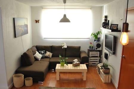 Comfy sofa House in Roma Condesa - Wohnung
