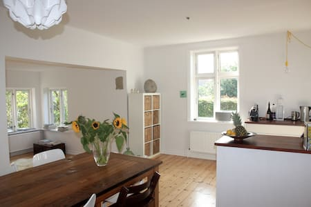 Spacious cosy family house! - Copenhague - Villa