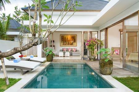 Luxury Two Bedroom Villa - Vila