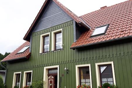 Spatzennest im Grünenhaus - Elbingerode (Harz)