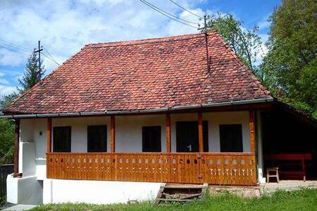 House in Geges. - Ghinești - Casa