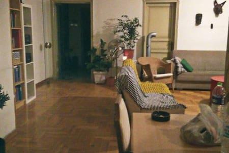 Cozy apartment (center)/σπίτι στο κέντρο του Βoλου - Volos - Apartment