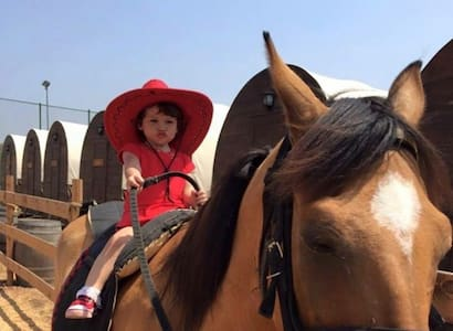 Wonderful experience Horse Wagons. - Chatka