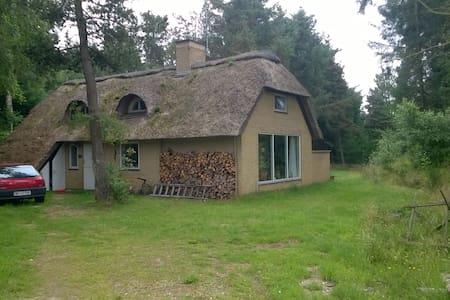 Sommerhus tæt ved Vesterhav, skov og natur - Kabin