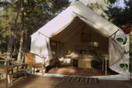 Glamping tents on 80 acre ranch - Zelt
