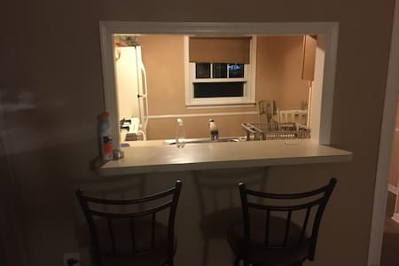 1 Bd rm Condo next to Rt 1 Iselin. - Woodbridge Township - Condominium