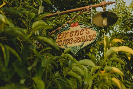Irene's Treehouse - Treehouse
