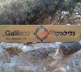 Galileco - Hararit - Lakás