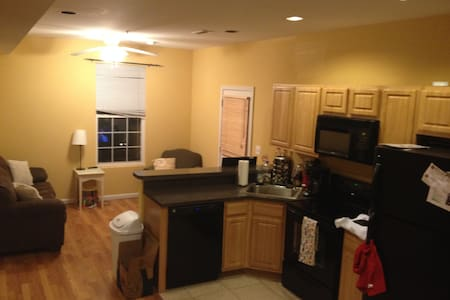 Convenient apt near Columbia Heights/Park View - Appartement