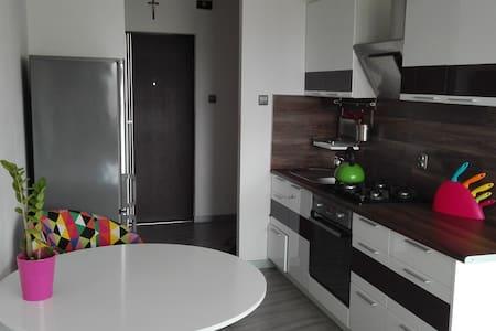 Sunny studio in Warsaw - Warszawa - Apartment