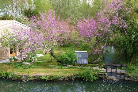 l'île aux bambous, maison écologique - La Crèche - Erdhaus