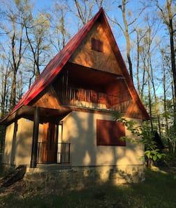 Útulná chata pri jazere - Chalet