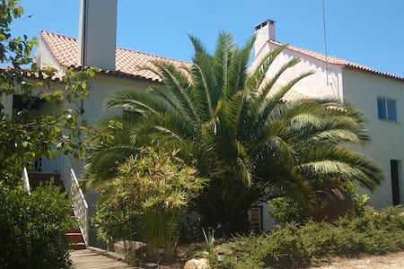 Big House in Figueiro dos Vinhos - Ev