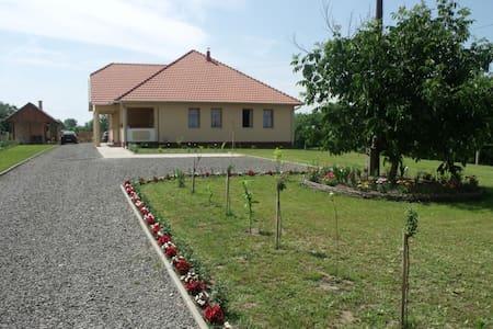 Kölcsey Kúria - Dům