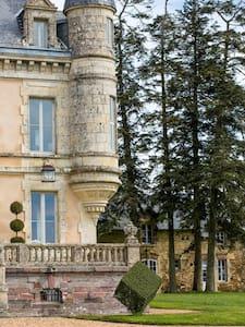 Chateau de la Goujonnerie CHAT - Loge-Fougereuse - Slot