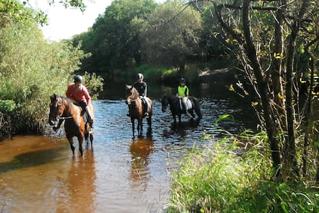 CLOSED FOR WINTER Family B&B with 3 comfortable rooms with TV, WIFI, en-suites bathrooms. We run a small riding stables. Trekking on safe ponies through the scenic local area is available. Close to Ireland west airport, ideal for touring the west.
