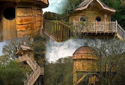 Cabane dans les arbres-enchantée 2p - Baumhaus