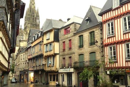 Charming breton flat downtown - Apartmen