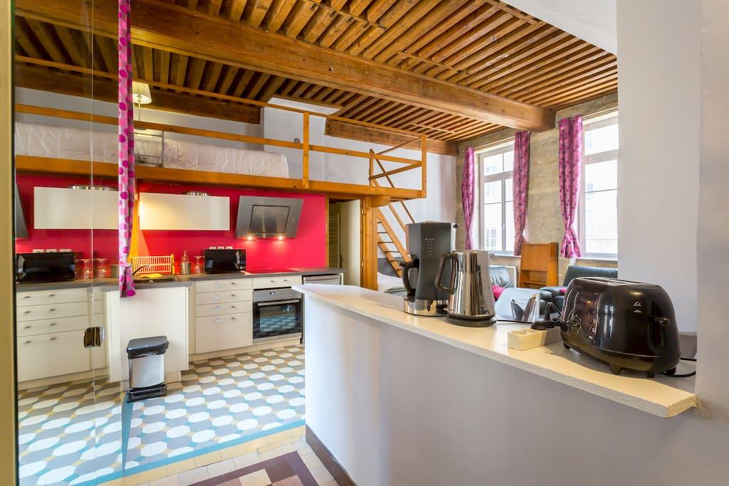 le loft des canuts appartements louer lyon. Black Bedroom Furniture Sets. Home Design Ideas