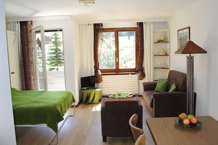 Wohnung mit Balkon in Andermatt - Apartemen
