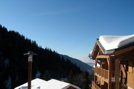 Perfect Ski Apartment, French Alps - Apartemen